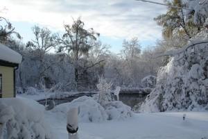 stormhalloween2011-005small1