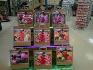 Floral Packaging
