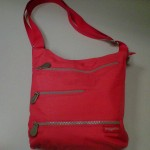 Red everyday bag