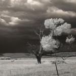 """Awaiting the Storm,"" photography by Jacquelyn Etling"