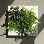 sagegreenlife Edelwhite hydroponic garden