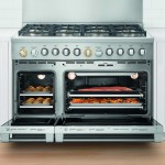 "Fisher & Paykel DCS 48"" professional range"