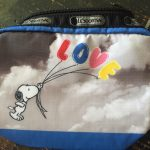 Little purse